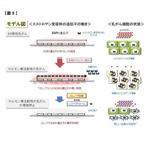 nakao150429_7