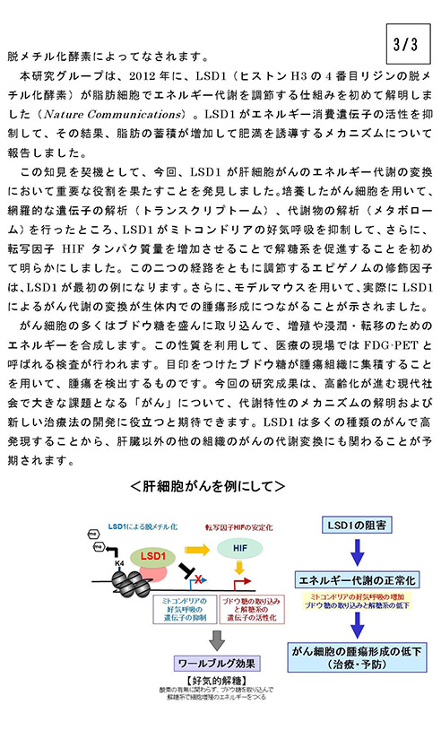 sakamoto2015feb_3